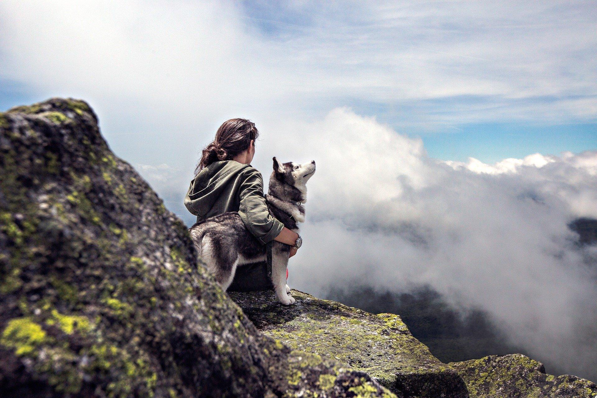 GPS Tracker Hunde