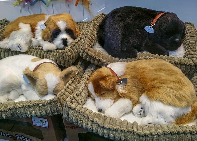 Hundebett